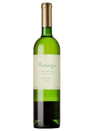 MATAOJO-ALBARINO-FRESCO